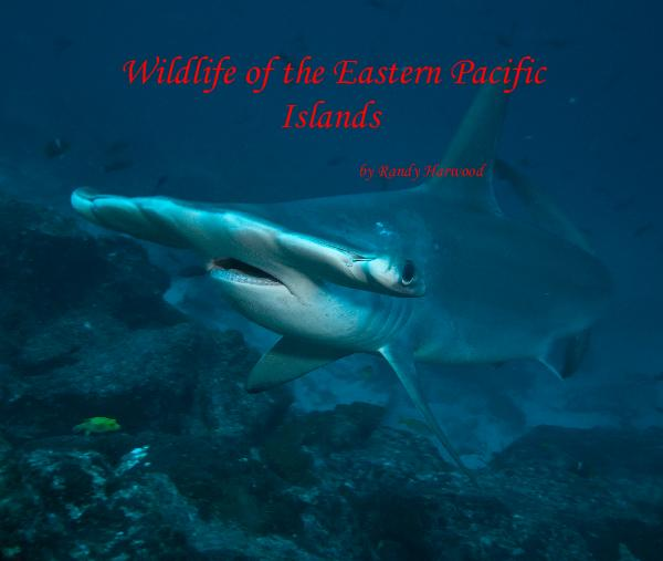 View Wildlife of the Eastern Pacific Islands by Randy Harwood by