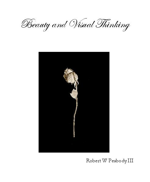 View Beauty and Visual Thinking by Robert W Peabody III