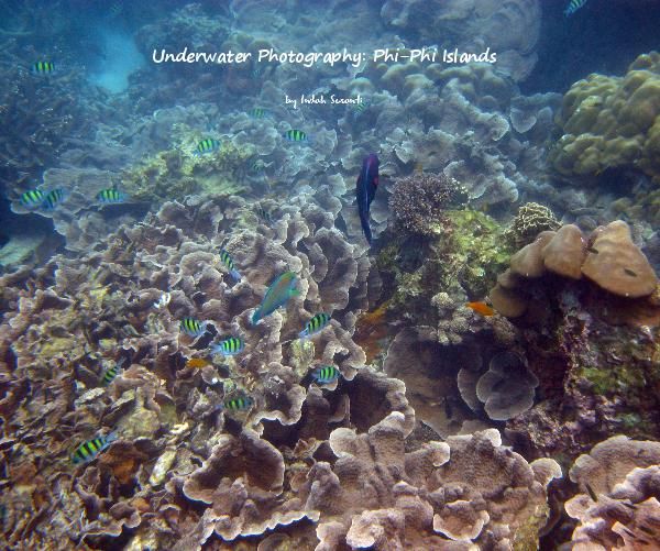 View Underwater Photography: Phi-Phi Islands by indahs
