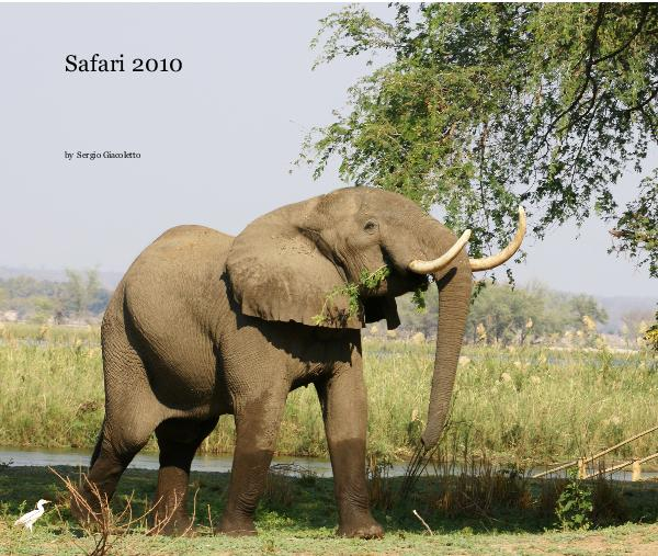 Click to preview Safari 2010 photo book