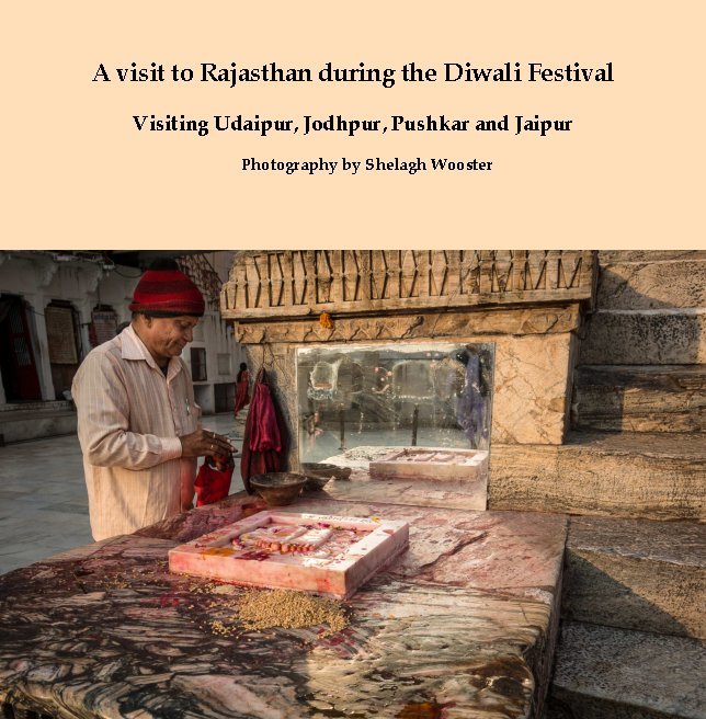 View A visit to Rajasthan during the Diwali Festival by Shelagh Wooster