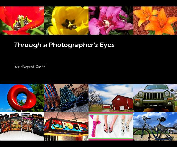 View Through a Photographer's Eyes by Maryanne Brown