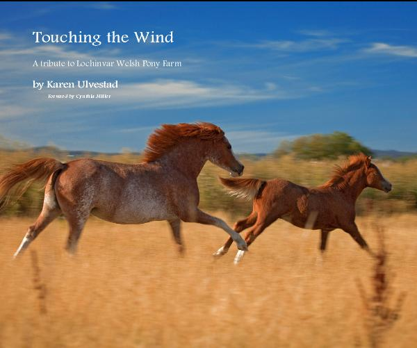 Touching the Wind