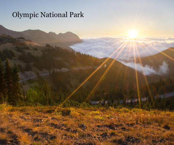 View Olympic National Park by Patrick St.Onge