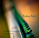 Picture Poet - Arts & Photography photo book