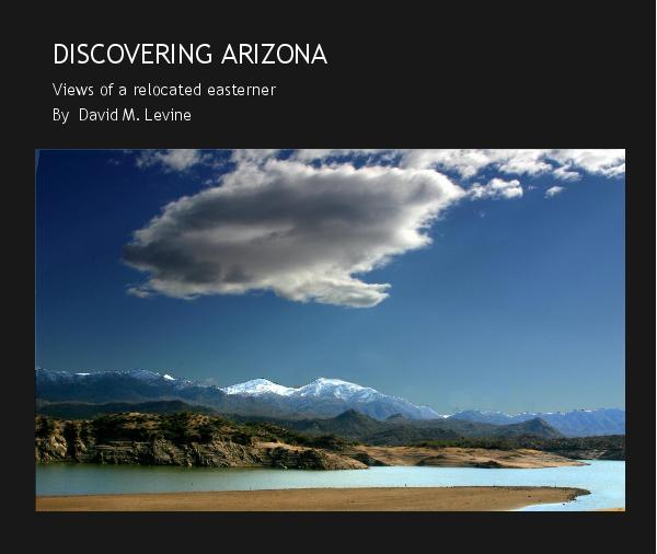 Ver DISCOVERING ARIZONA por David M. Levine
