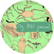 My Bug Journal